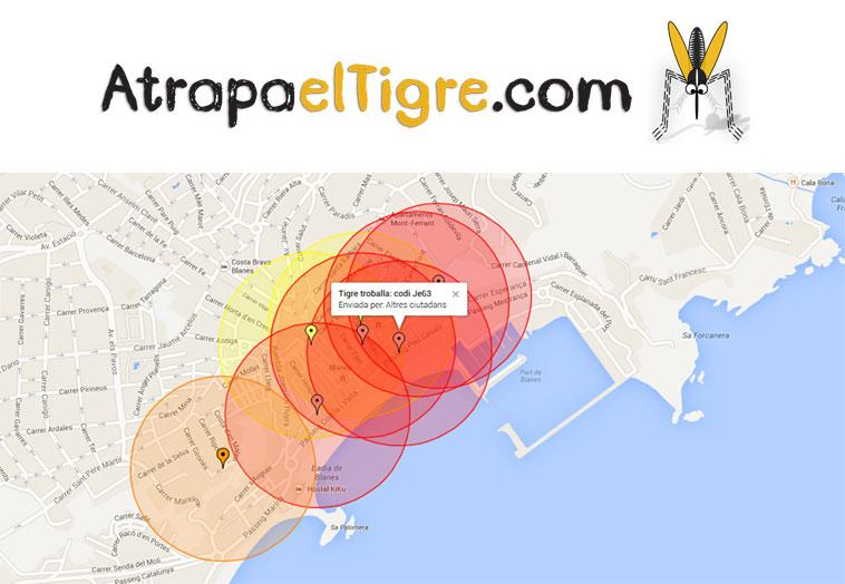 Mosquito-tigre-atrapa-el-tigre-tigatrapp-dest