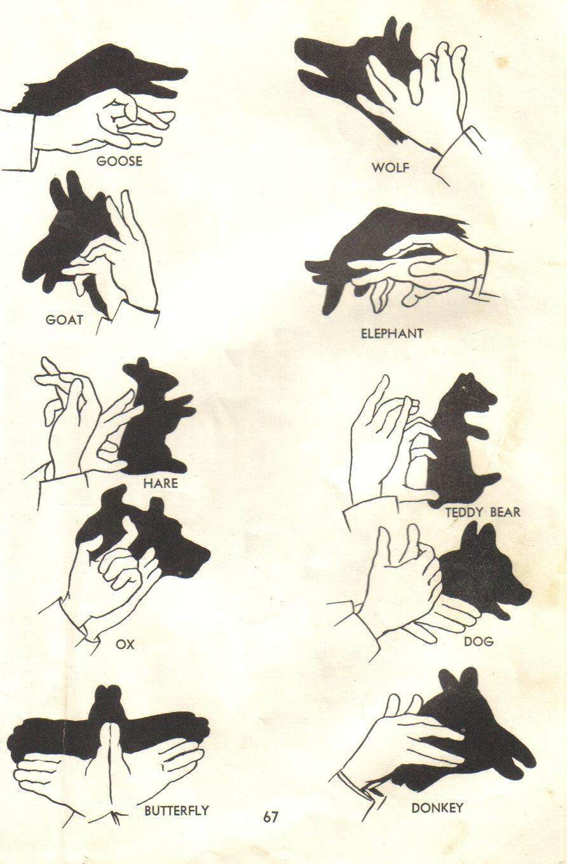 Cómo hacer sombras chinescas?